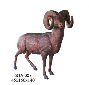 STA-007